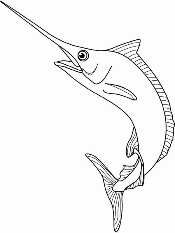 Swordfish, : Marlin the Swordfish Coloring Page