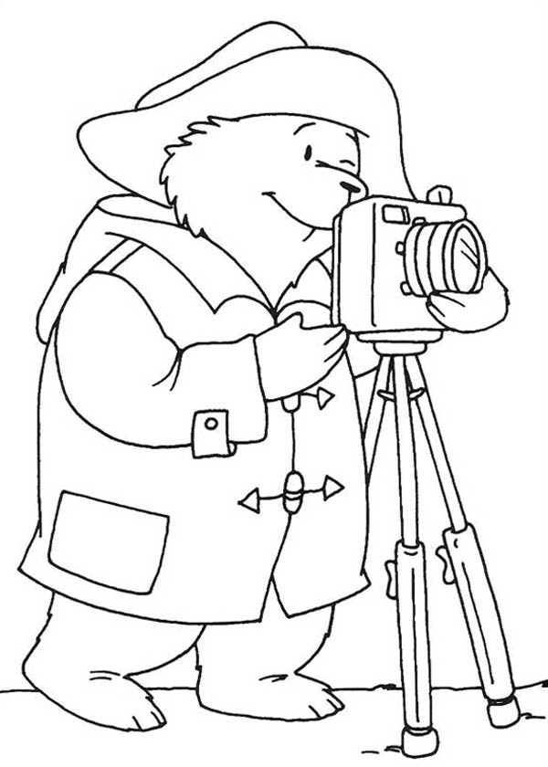 Paddington Bear, : Paddington Bear the Photographer Coloring Page