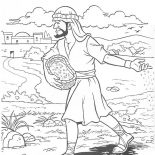 Parable of the Sower, Parable Of The Sower Coloring Page For Kids: Parable of the Sower Coloring Page for Kids