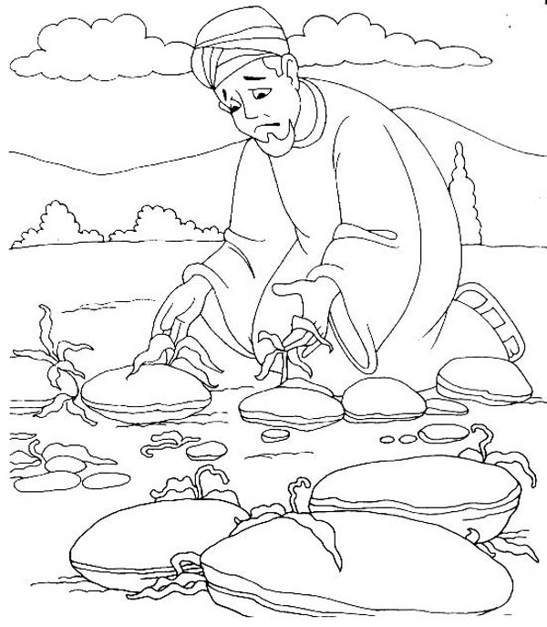 Parable of the Sower, : Plant Grow on Bad Ground in Parable of the Sower Coloring Page