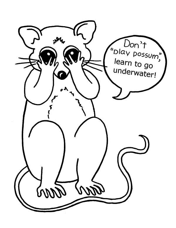 Possum, : Possum Closed His Eyes Coloring Page