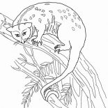 Possum, Possum Up On Tree Coloring Page: Possum Up on Tree Coloring Page