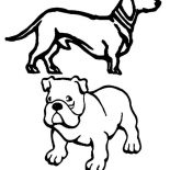 Pug, Pug Dog And Slinky Coloring Page: Pug Dog and Slinky Coloring Page