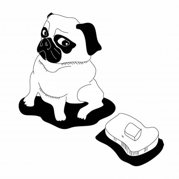 Pug, : Pug Want to Eat a Toast Coloring Page