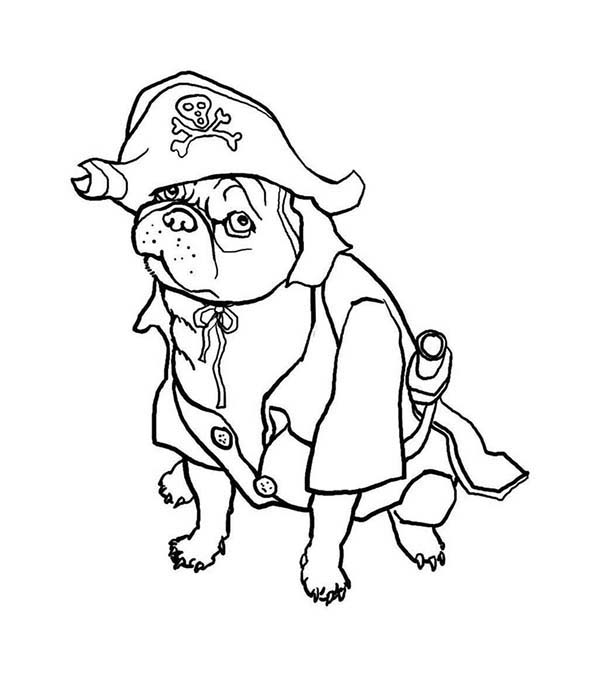 Pug, : Pug the Dog Pirate Coloring Page