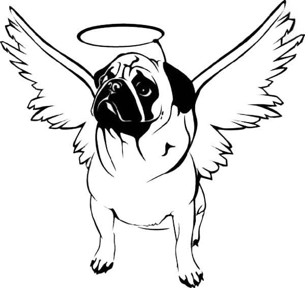 Pug, : Pug with Hallo on His Head Coloring Page