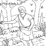 Parable of the Sower, Realistic Picture Of Parable Of The Sower Coloring Page: Realistic Picture of Parable of the Sower Coloring Page