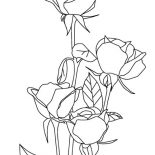 Nature, Roses Of Nature Coloring Page: Roses of Nature Coloring Page