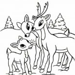 Rudolph, Rudolph The Red Nosed Reindeer And His Parents Coloring Page: Rudolph the Red Nosed Reindeer and His Parents Coloring Page
