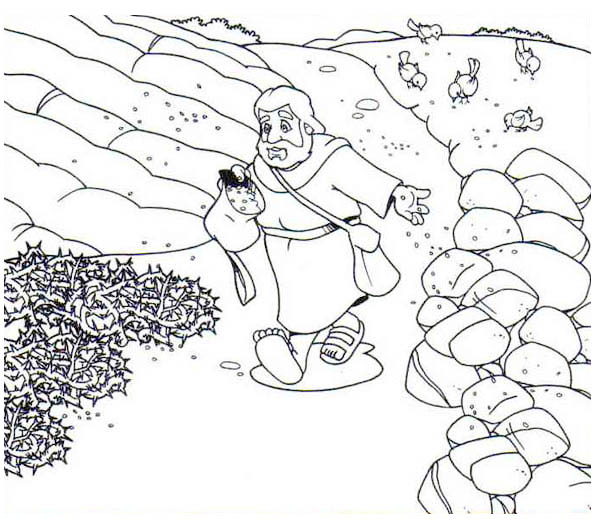 Parable of the Sower, : Scattering Seed into Rock Places in Parable of the Sower Coloring Page