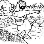 Parable of the Sower, Seed That Falling Into Good Soil In Parable Of The Sower Coloring Page: Seed that Falling into Good Soil in Parable of the Sower Coloring Page