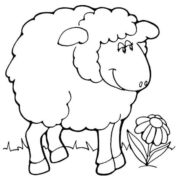 Shaun the Sheep, : Shaun the Sheep Image Coloring Page