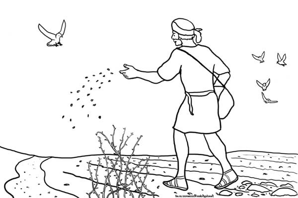 Parable of the Sower, : Some Seed Fall into Rocky Place in Parable of the Sower Coloring Page