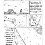 Parable of the Sower, Some Seed Fell By The Wayside In Parable Of The Sower Coloring Page: Some Seed Fell by the Wayside in Parable of the Sower Coloring Page