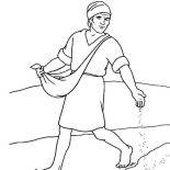 Parable of the Sower, Spread Seed Along The Way In Parable Of The Sower Coloring Page: Spread Seed Along the Way in Parable of the Sower Coloring Page