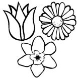 Spring Flower, Spring Flower Coloring Page For Kids: Spring Flower Coloring Page for Kids