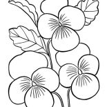 Spring Flower, Spring Flower For Love Ones Coloring Page: Spring Flower for Love Ones Coloring Page