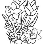 Nature, Spring Flower Of Nature Coloring Page: Spring Flower of Nature Coloring Page