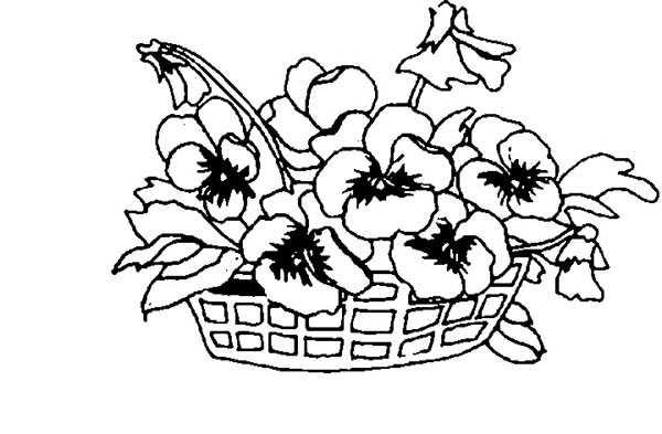 Spring Flower, : Spring Flower on a Basket Coloring Page