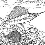 Swordfish, Swordfish Between Coral Reef Coloring Page: Swordfish Between Coral Reef Coloring Page