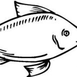 Swordfish, Swordfish Coloring Page For Kids: Swordfish Coloring Page for Kids