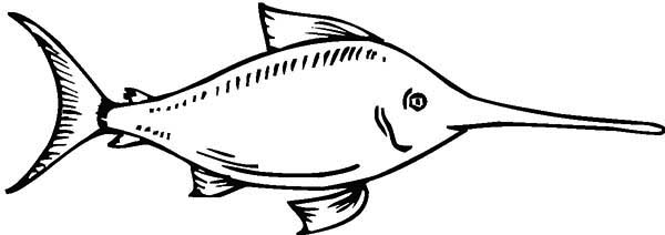 Swordfish, : Swordfish Coloring Page for Kids