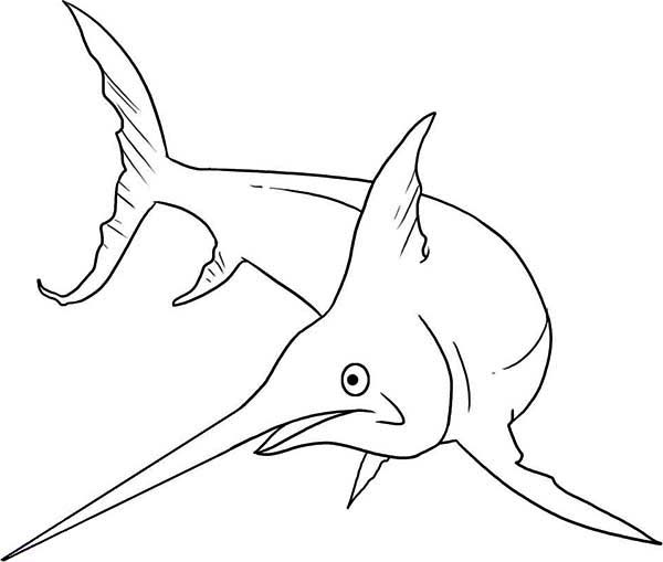 Swordfish, : Swordfish is a Monster Fish Coloring Page