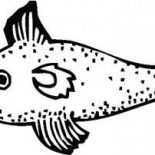 Swordfish, Swordfish With Sharp Bill Coloring Page: Swordfish with Sharp Bill Coloring Page