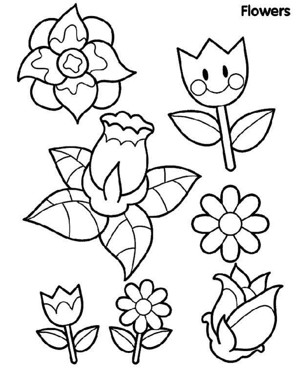 Spring Flower, : Type of Spring Flower Coloring Page
