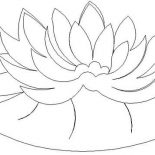 Lily Pad, Water Lily Pad Coloring Page: Water Lily Pad Coloring Page
