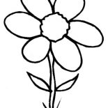 Spring Flower, Wild Spring Flower Is Grow Up Coloring Page: Wild Spring Flower is Grow Up Coloring Page