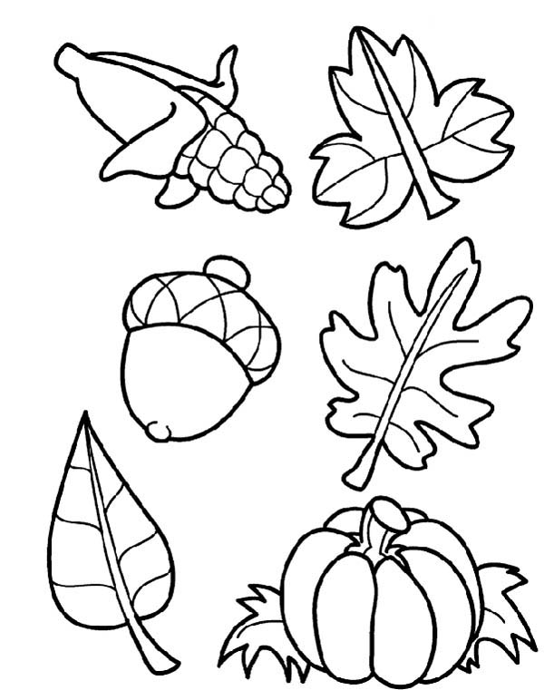 Autumn, : Harvest Crops in Autumn Season Coloring Page