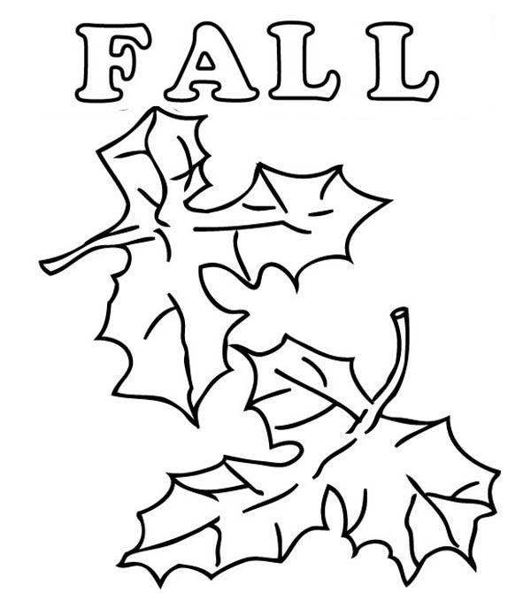 Autumn, : How to Draw Autumn Leaves Coloring Page