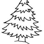 Christmas Trees, Natural Christmas Trees Coloring Pages: Natural Christmas Trees Coloring Pages