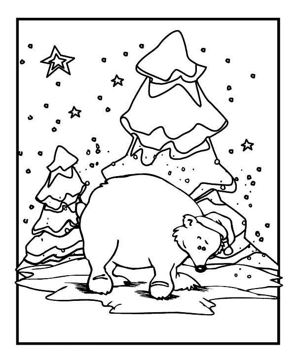 Winter, : Polar Bear Wearing Santas Hat on Winter Season Coloring Page