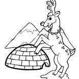 Winter, Reindeer And Igloo On Winter Season Coloring Page: Reindeer and Igloo on Winter Season Coloring Page