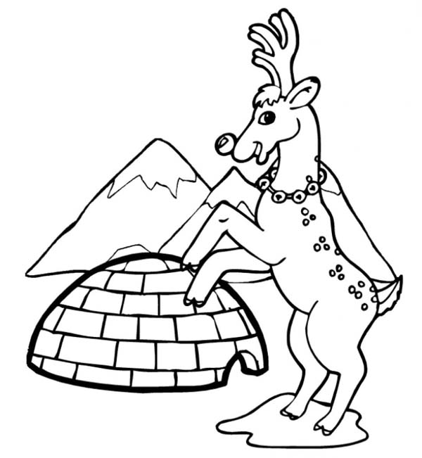 Winter, : Reindeer and Igloo on Winter Season Coloring Page