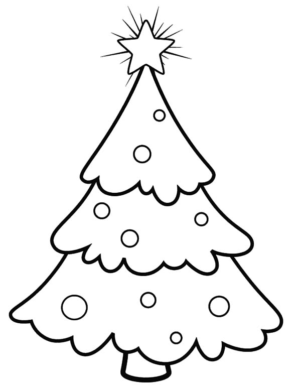 Christmas Trees, : Snowy Christmas Trees Coloring Pages