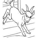 Goat, A Frisky Goat Coloring Pages: A Frisky Goat Coloring Pages
