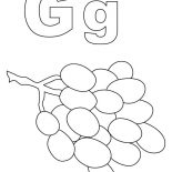Grapes, Alphabet G For Grapes Coloring Pages: Alphabet G for Grapes Coloring Pages