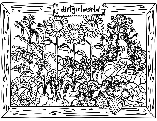 Garden, : Awesome Vegetable Garden Coloring Pages