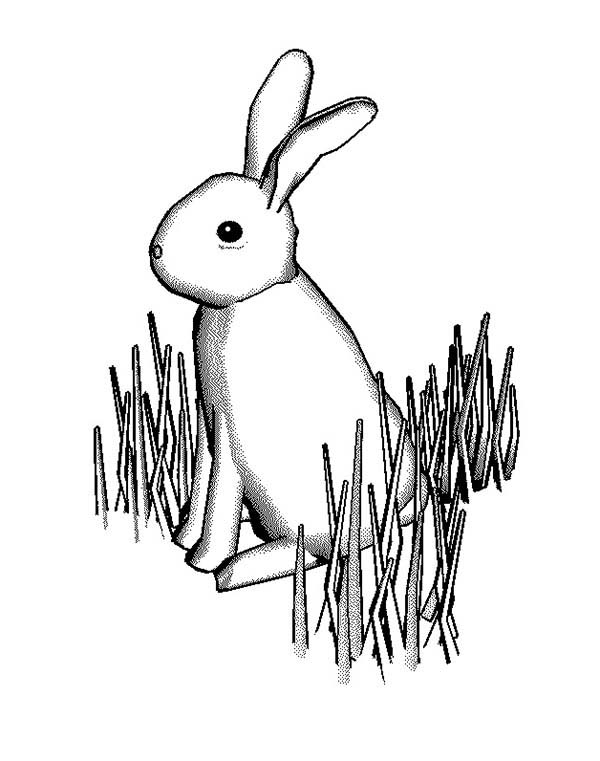 Grass, : Bunny Rabbit Standing on Grass Coloring Pages