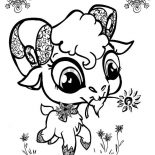 Goat, Cute Big Eyed Goat Coloring Pages: Cute Big Eyed Goat Coloring Pages