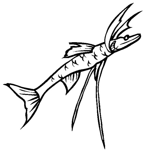Monster Fish, Deep Sea Monster Fish Tripod Fish Coloring Pages: Deep Sea Monster Fish Tripod Fish Coloring Pages