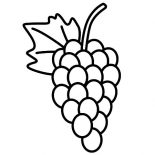 Grapes, Delicious Fruit Grapes Coloring Pages: Delicious Fruit Grapes Coloring Pages