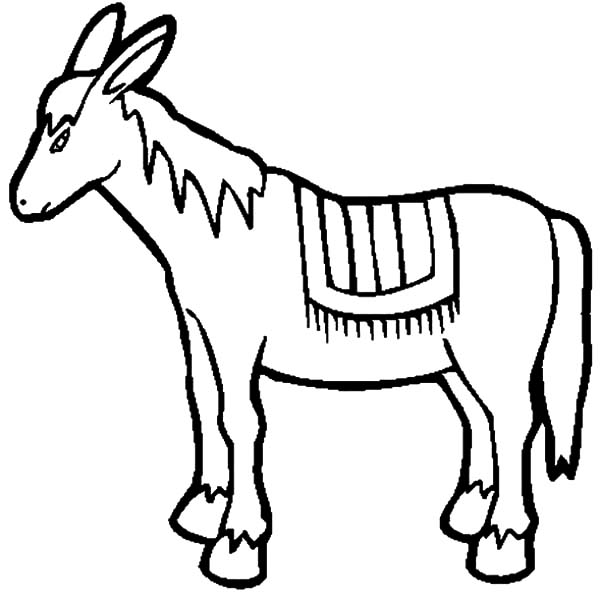 Mexican Donkey Stink Breath Coloring Pages Color Luna