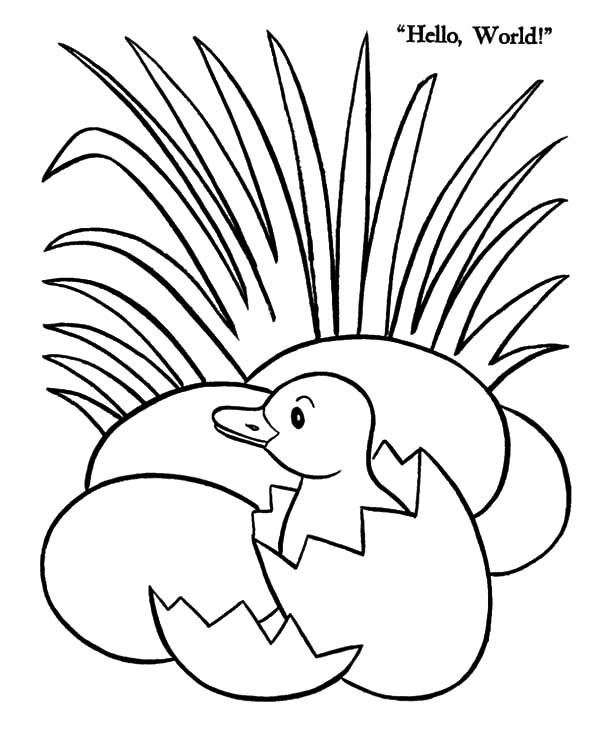 Grass, : Duck Egg Hatching Beside Grass Coloring Pages