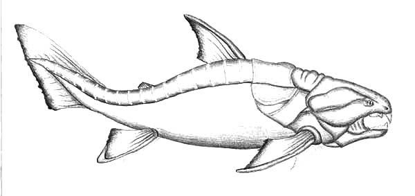 Monster Fish, : Dunkleosteus Monster Fish Coloring Pages
