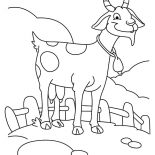 Goat, Farming Goat Coloring Pages: Farming Goat Coloring Pages