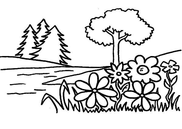 Flower Garden Coloring Pages Color Luna
